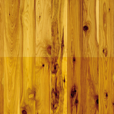 Cypress australian wood flooring cypress wood floors for Australian cypress flooring unfinished